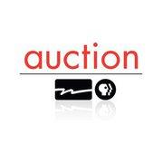 WPT Auction